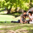 Joyful family camping in the park - Stock Photo