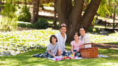 Joyful family picnicking in the park — Stock Photo