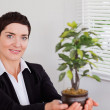 Secretary holding a plant — Stock Photo #11178723
