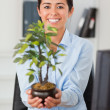 Gorgeous woman holding a plant while looking at the camera — Stock Photo