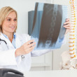 Royalty-Free Stock Photo: Charming doctor looking at x-ray