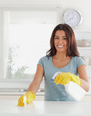 Charming female doing the housework while using a spray — Stock Photo