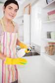 Brunette woman cleaning a cupboard — Stok fotoğraf