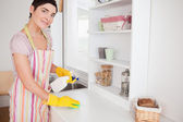 Beautiful woman cleaning a cupboard — Stok fotoğraf