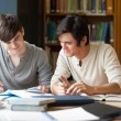Stock Photo: Students preparing essay