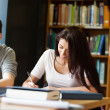Students working on an essay — Stock Photo