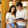 Royalty-Free Stock Photo: Portrait of students looking at a book