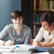 Stock Photo: Young men studying