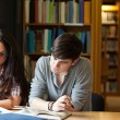 Students writing an essay — Stock Photo