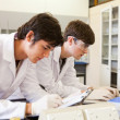 Chemistry students writing a report — Stock Photo