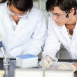 Scientists making an experiment — Stock Photo