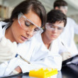 Three scientists working — Stock Photo #11191322