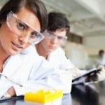 dwóch naukowców Dokonywanie eksperyment — Zdjęcie stockowe