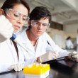 Stock Photo: Focused scientists making experiment
