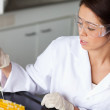 Brunette woman making an experiment - Stock Photo