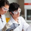 Concentrate science students looking at Petri dish — Foto Stock