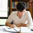 Foto Stock: Male student working on an essay