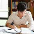 Foto Stock: Male student working on essay