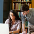 Portrait of students working together with a laptop — Stock Photo