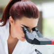 Close up of a scientist looking into a microscope — Stock Photo