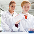 Stock Photo: Cute scientists doing experiment