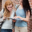 Portrait of student showing something to her classmate — Stock Photo #11192443
