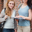 Portrait of a student helping a classmate — Stock Photo #11192447