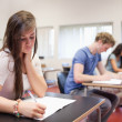 Stock Photo: Serious young adults studying