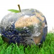 Stock Photo: 3d apple Earth on the grass