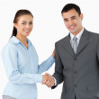 Smiling business partners shaking hands — Stock Photo #11199107