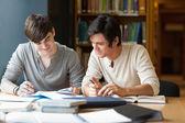 Studenti se připravují esej — Stock fotografie