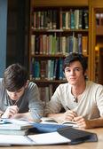 Retratos de alumnos trabajando en un ensayo — Foto de Stock