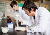 Male chemistry students making an experiment — Stock Photo