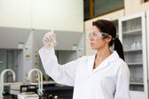 Chemist looking at a Erlenmeyer flask — Stock Photo