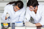 Focused science students making an experiment — Stock Photo