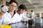 Serious science students working — Stock Photo