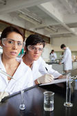 Portrait of science students working — Stock Photo