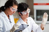Concentrate science students looking at Petri dish — Stock Photo