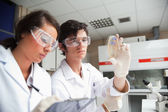 Students in science class looking at a Petri dish — Stock Photo