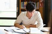 Manlig student arbetar på en uppsats — Stockfoto