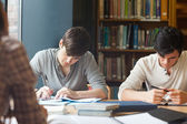 Members of a study group working — Stock Photo