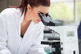 Scientist looking into a microscope — Stock Photo