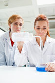 Portrait of scientists doing an experiment — Stock Photo