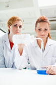 Portrait of cute scientists doing an experiment — Stock Photo