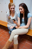 Ritratto di uno studente felice mostrando un messaggio di testo al suo amico — Foto Stock