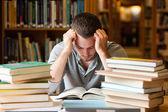 Moe student die een veel te lezen — Stockfoto