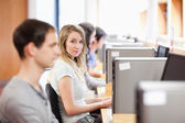Fellow students using a computer — Stock Photo