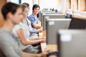 Young fellow students in an IT room — Stock Photo