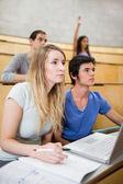 Portrait of students listening a lecturer while their classmate is raising her hand — Stock Photo