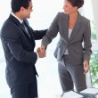 Stock Photo: Business partner shaking hands after closing deal